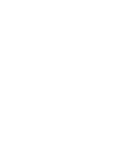"Lithuanian folk dance group of Vilnius Gediminas technical university ""Vingis"""